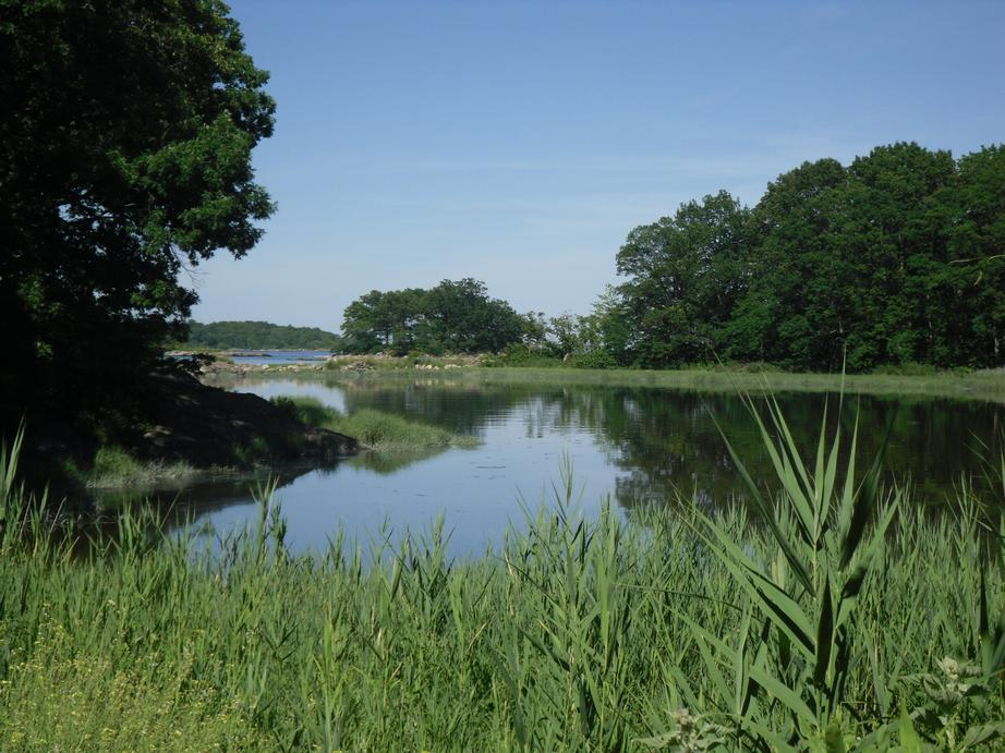 Pelham Bay